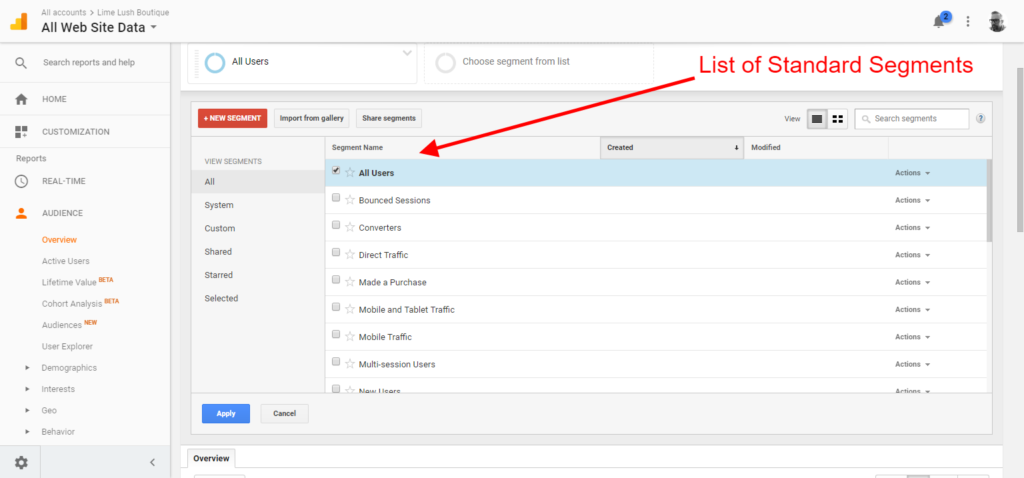 google analytics custom segments standard